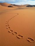 Footprints in sand Fotografisk tryk af Frans Lemmens