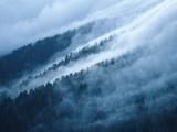 Fog in the Smokey Mountains Fotografisk tryk af Karen Kasmauski