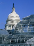 United States Botanic Garden Conservatory and Capitol, Washington DC, USA Photographic Print by Murat Taner