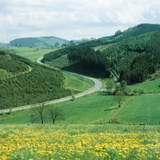 Landscape and country road in the Sauerland, Germany Photographic Print by Fridmar Damm