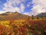 Tundra and Ogilvie Mountains in Fall Colors Photographic Print by John Eastcott & Yva Momatiuk