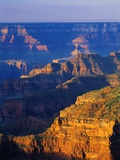 Bright Angel Trail Photographic Print by Danny Lehman