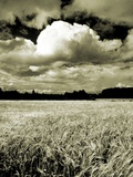 Field Under Cloudy Sky Photographic Print by W. Krecichwost