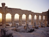 Roman Ruins in Volubilis Photographic Print by Floris Leeuwenberg