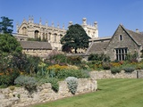 Garden at Christ Church College Photographic Print by Steve Vidler