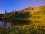 Tipsoo Lake and Naches Peak Photographic Print by Craig Tuttle