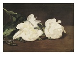 Branch of White Peonies and Secateurs Lámina giclée por Edouard Manet
