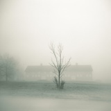 Foggy Morning Scene with Barn Photographic Print by Kevin Cruff