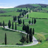 Country road, Tuscany, Italy (near Pienza) Photographic Print by Guenter Rossenbach