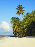 Beach at Soneva Fushi Resort in the Baa Atoll Photographic Print by Frank Krahmer