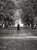 Woman Running on Tree Lined Lane Photographic Print by Elisa Lazo De Valdez