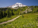 Mount Rainier National Park Photographic Print by Craig Tuttle