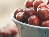 Cranberries in a bowl Photographic Print by  Fancy