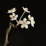 Twig of Tiny Blossoms from Hawthorn Tree Photographic Print by Tom Marks