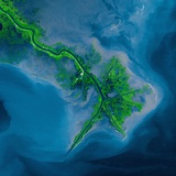 Mississippi Delta Acquired by the Landsat 7 Satellite Photographic Print