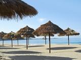 Sunny Beach and Palapas Fotografisk tryk af Randy Faris