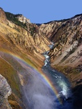 Rainbow over Lower Yellowstone Falls Photographic Print by James Randklev