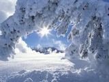 Snowy Landscape in Yellowstone Fotografie-Druck von Jeff Vanuga