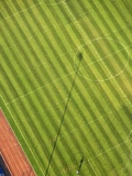Soccer field Photographic Print by George Hammerstein