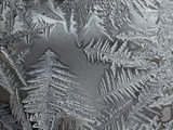 Ice crystals Photographic Print by Steve Klics