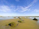 Sandy Beach at Low Tide, Valdez Peninsula Photographic Print by John Eastcott & Yva Momatiuk