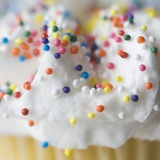 Cupcake with Sprinkles and Frosting Photographic Print