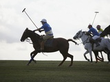 Polo game Photographic Print by Lucas Lenci