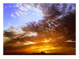 Summer Dawn Giclee Print by Pat Fridell