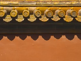 Tiles on Roof of Forbidden City Photographic Print by Xiaoyang Liu