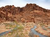 Rural Trail Through Desert Photographic Print by  Beathan