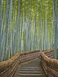 Bamboo Lined Path at Adashino Nembutsu-ji Temple Photographic Print by Rudy Sulgan