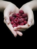Handful of Raspberries Photographic Print by Elisa Lazo De Valdez