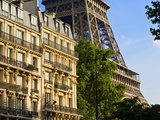 Eiffel Tower and Apartment Buildings Photographic Print