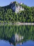 Picturesque Castle Above Lake Bled Photographic Print by William Manning
