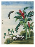 Chinese Watercolor of a Flowering Plant and a Butterfly Giclee Print