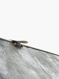 Skateboard balanced on the edge of the bowl Fotografie-Druck von Tomas Rodriguez