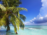 Beach at Soneva Fushi Resort in the Baa Atoll Photographic Print by Frank Krahmer