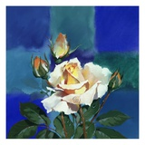 White Rose in Front of Cross Giclee Print by Brian Harper