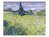 Landscape with Green Corn Giclee Print by Vincent van Gogh