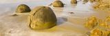 Large Moeraki Boulders on Beach Photographic Print by John Eastcott & Yva Momatiuk