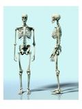 Two Skeletons Lámina giclée por Matthias Kulka