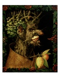 Winter Giclee Print by Giuseppe Arcimboldo