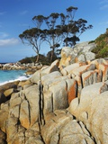 Rocky Coastline at Bay of Fires Fotografie-Druck von Frank Krahmer