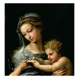 Detail of The Virgin of the Rose Giclee Print by Raphael 
