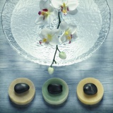 Bowl of Water and Soaps Photographic Print