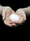 Handful of Egg Fotografisk tryk af Elisa Lazo De Valdez