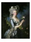 Marie Antoinette Giclee Print by Elisabeth Vigee-Lebrun