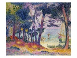 A Pine Grove Giclee Print by Henri-Edmond Cross