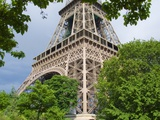 Eiffel Tower and Trees Photographic Print