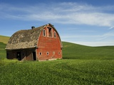 Red Barn in Palouse Country Photographic Print by Wolfgang Kaehler
